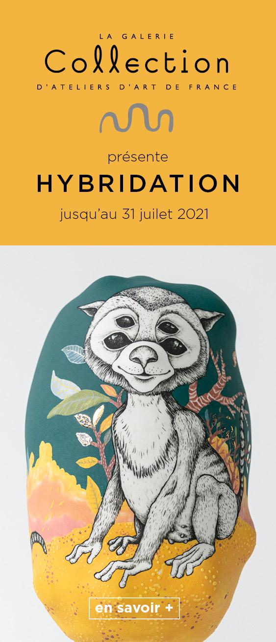 Collection Hybridation